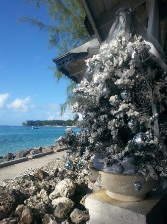 Holetown, Barbados: Seaside table view