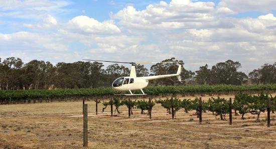 Grampians, Austrália: Landing at Best's Wines