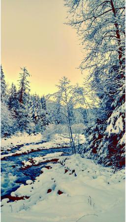 Brackendale, Canada: IMG_20151228_221834_large.jpg