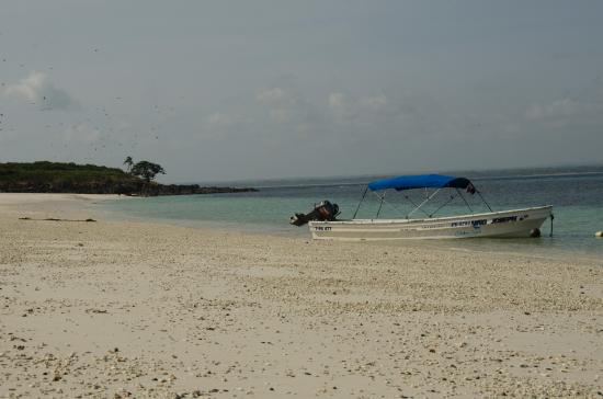 Isla Iguana照片