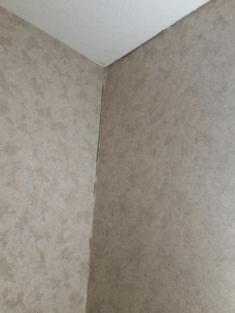 Hampton Inn Syracuse North (Airport Area): Wall/ceiling gaps.