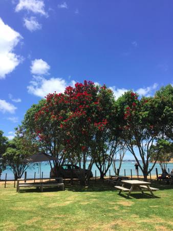 Wyspa Waiheke, Nowa Zelandia: View from the terrace