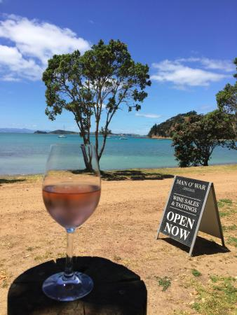 Waiheke Island, New Zealand: Rose & views