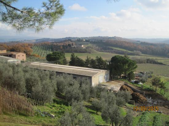 High point of my visit to Tuscany
