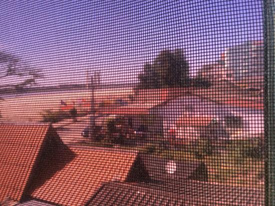 Beau Rivage Mekong Hotel: Mekong through the insect screens