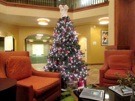 Fairfield Inn & Suites Santa Rosa Sebastopol: Christma Tree in Lobby December 2015, Fairfield Inn and Suites, Santa Rosa/Sebastopol