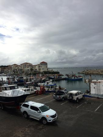 Port St Francis: View from Loligos Restaurant