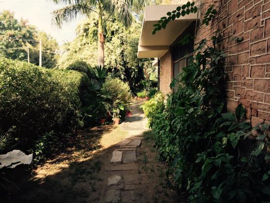 Indrashan: photo1.jpg