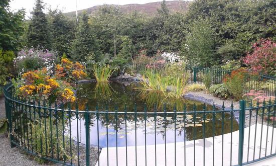 Carrickdale Hotel: Pond area