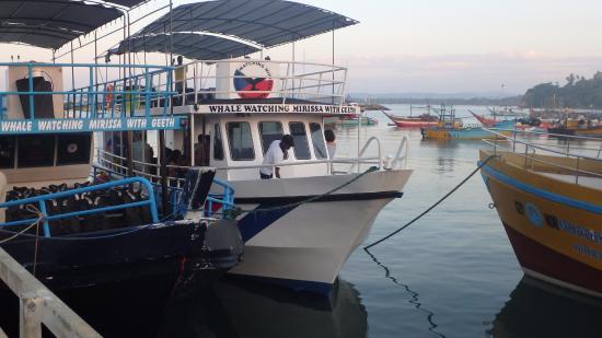 Mirissa, Sri Lanka: Barcos de WWMWG