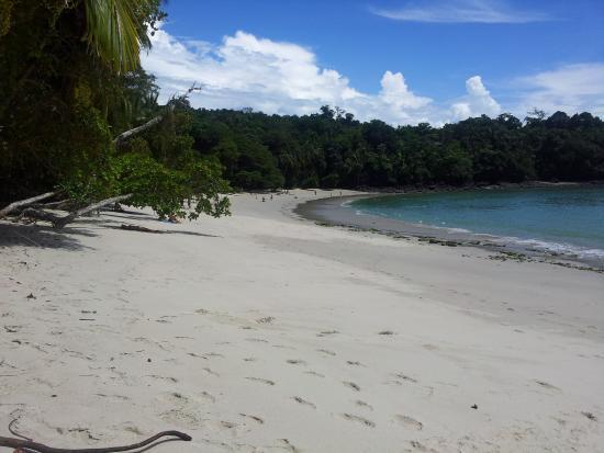 Hotel Playa Espadilla: Strand im Nationalpark