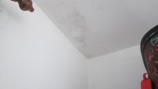 Black mould on the ceiling picture of apartamentos sofia playa ibiza es canar tripadvisor - Apartamentos sofia playa ibiza ...