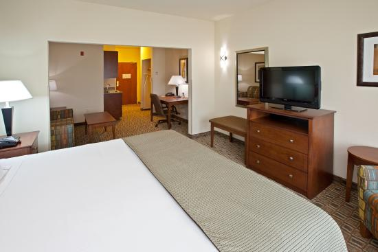 Holiday Inn Express Hotel & Suites Ripley: King Suite with Full Size Sofa Bed