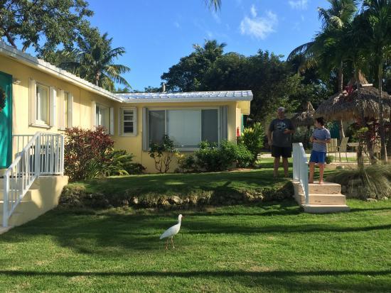 Bay Harbor Lodge: photo9.jpg