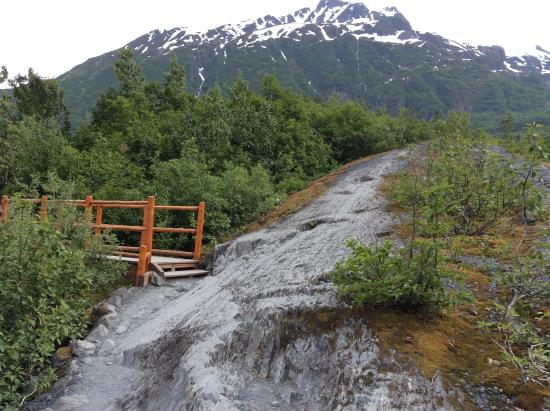Hiking trail Picture of Exit Glacier Kenai Fjords National Park