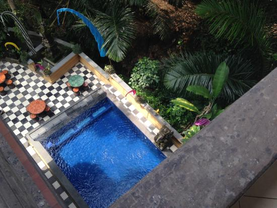Bembengan Ubud Cottage : Pool view