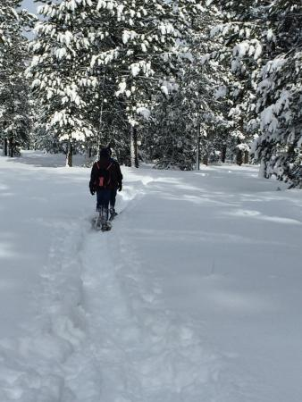 Sunriver, OR: Trail is not professionally groomed but it is well trod