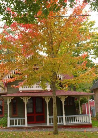 Oak Bluffs, ماساتشوستس: Martha's Vineyard Camp meeting Association