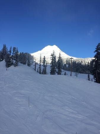 Mount Hood Meadows: photo1.jpg