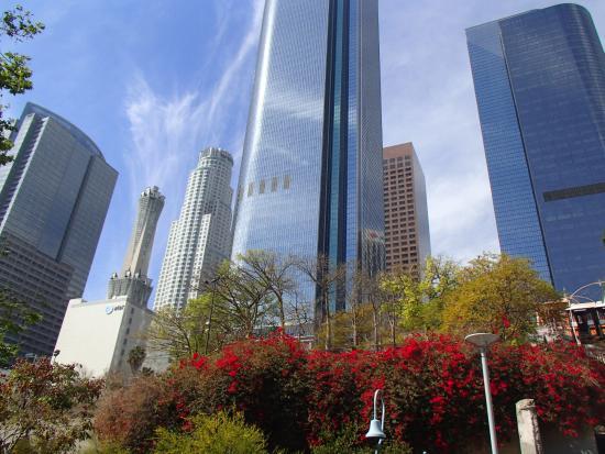 Los Angeles Conservancy Walking Tours: Downtown LA's highrises
