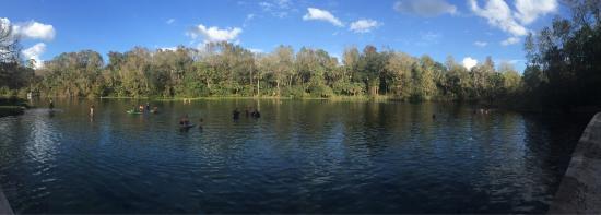 Leesburg, FL: photo2.jpg