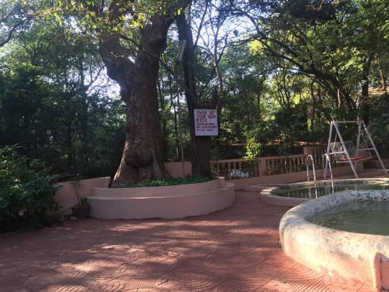 Hotel Woodlands Matheran: photo6.jpg