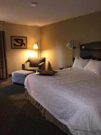 Hampton Inn Johnson City: Bed and sitting area