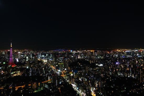 Picture of Tokyo City View Observation Deck (Roppongihills), Minato - TripAdv...