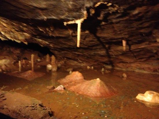 Cheddar Caves Tours