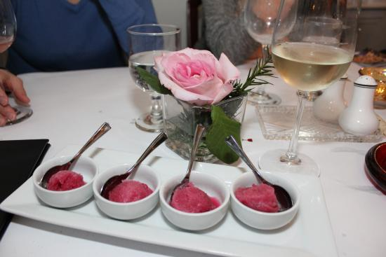 Tusket, Canada: Grape Sorbet
