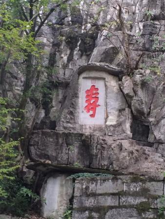 Jingjiang Royal Residence: A Unique Gift
