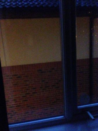 Premier Inn Newcastle Gosforth/Cramlington Hotel: Dark brick wall view!