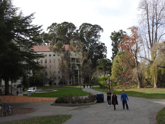 University of California, Berkeley: Parques