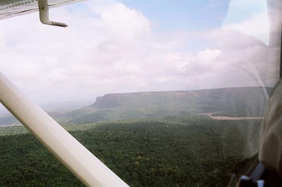 plane trip picture of angel falls canaima national park tripadvisor