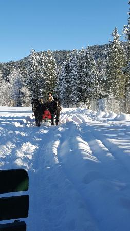 Icicle Outfitters Winter Sleigh Ride: 20151222_114559_001_large.jpg