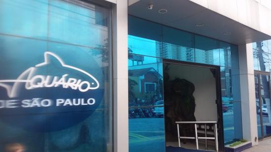 Urso Polar - Picture of Sao Paulo Aquarium, Sao Paulo - TripAdvisor