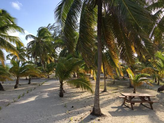 Pelican Beach - South Water Caye: photo1.jpg