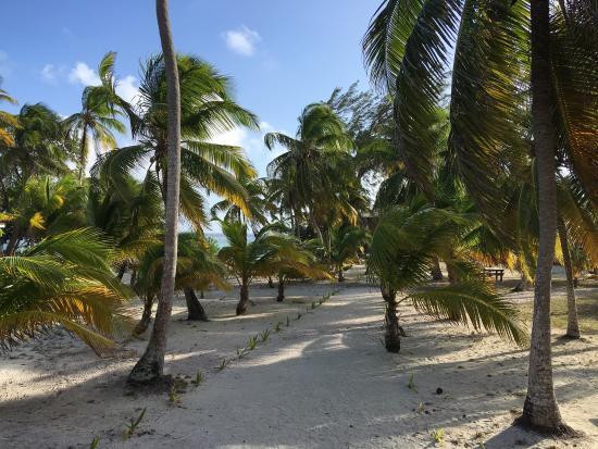 Pelican Beach - South Water Caye: photo2.jpg