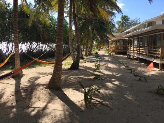 Pelican Beach - South Water Caye: photo3.jpg
