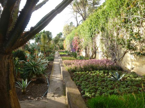 Madeira Botanical Garden: JARDIM BOTANICO
