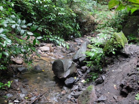 San Ramon, Nicaragua: Hiked along this stream