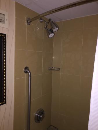 Greenville Marriott : Shower
