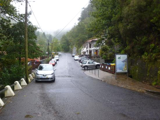 Laurissilva Forest: RIBEIRO FRIO BUS STOP