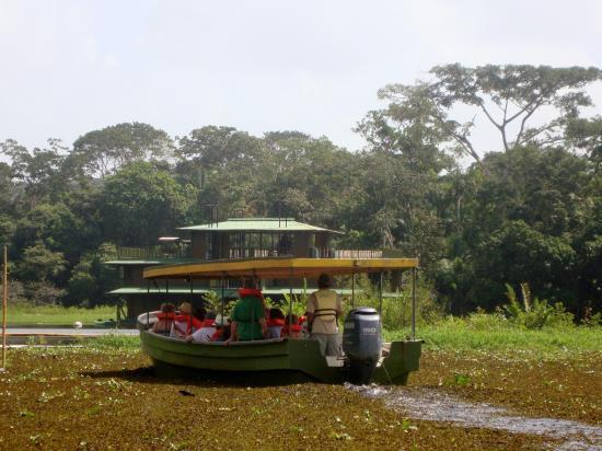 Jungle Land Panama: Day Excursions: jungle boat