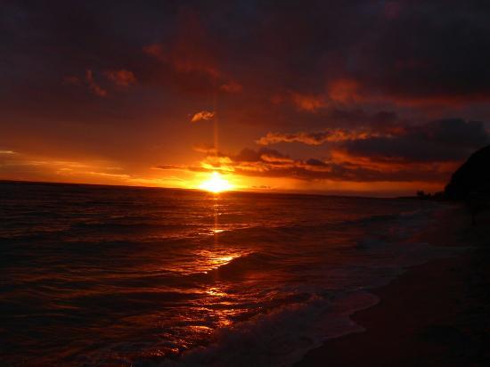 Taufua Beach Fales: P1140729_large.jpg