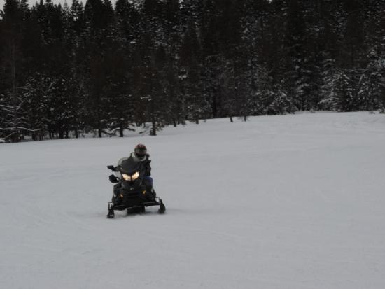 Eagle Ridge Snowmobile Outfitters : Free ride vin the meadow