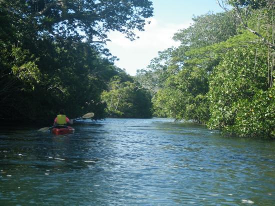 Savasi Island Villas: Kayaking the salt river to salt lake