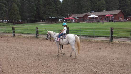 Greenhorn Creek Guest Ranch: pony ride in the arena for our youngest when he was 5 years old
