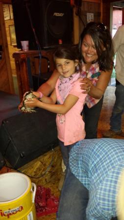 Quincy, Kaliforniya: frog racing