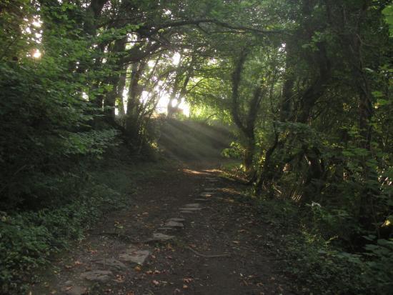 Aberdare, UK: Track base stones still evident